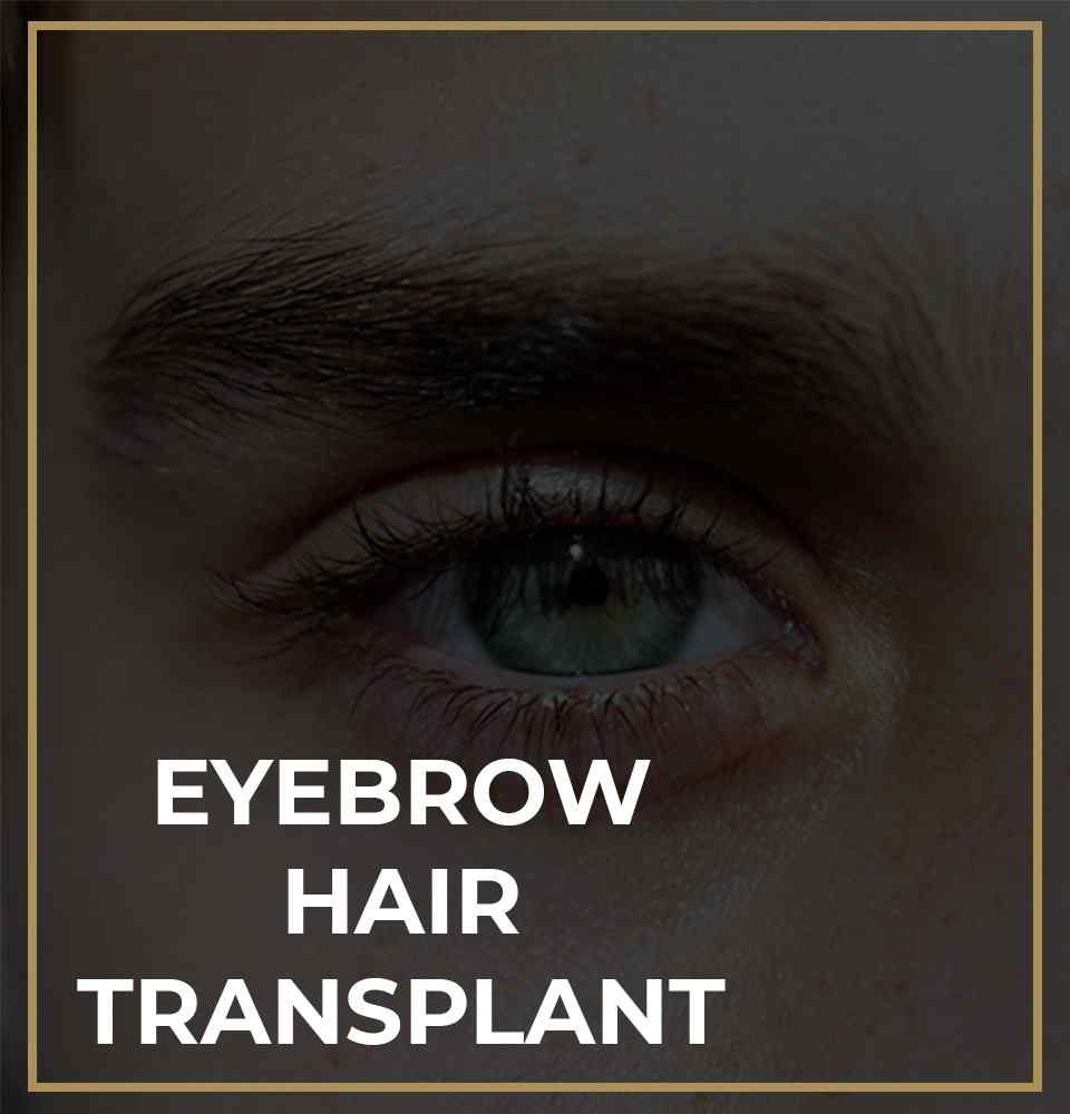 Facial hair restoration eyebrow